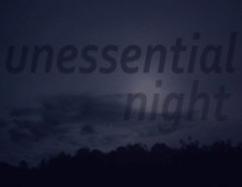 <em>Unessential Night</em> The Artists of Grizzly Grizzly – July 2012